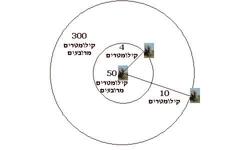 דיאגרמת טווח התקשורת של פילים