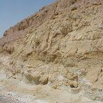 שכבות סלעי משקע במעלה העקרבים