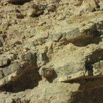 העתקה של שכבות צור וקירטון בנחל שלמה