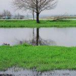 האגמון בשלהי חורף 2003