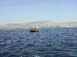דיג בים